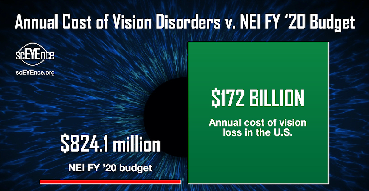 Graphic showing annual cost of vision disorders v. NEI FY'20 budget