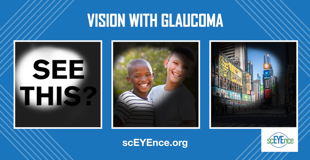 VRMWG Vision with Glaucoma examples with 3 photos simulations
